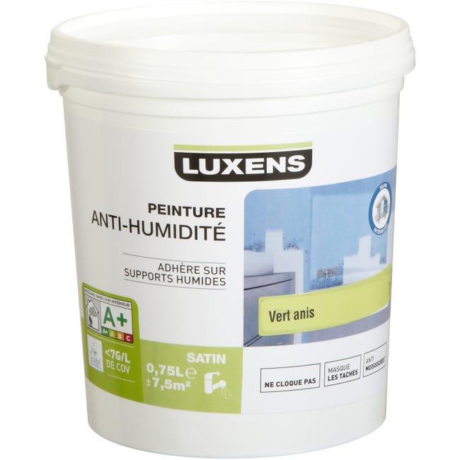 Peinture Antihumidite Luxens Vert Anis 0 75 L Leroy Merlin