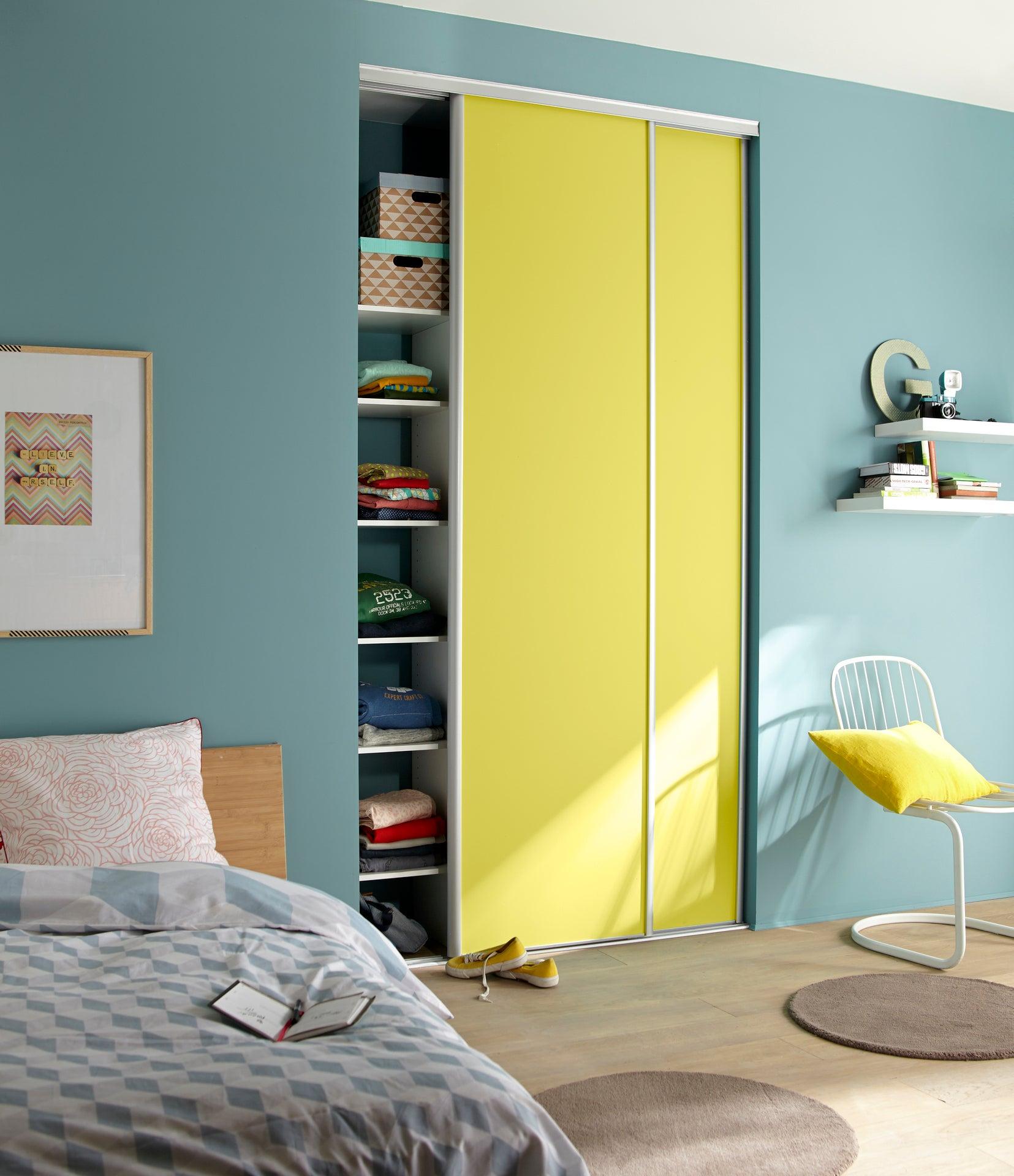 porte de placard coulissante à peindre spaceo l67 x h250