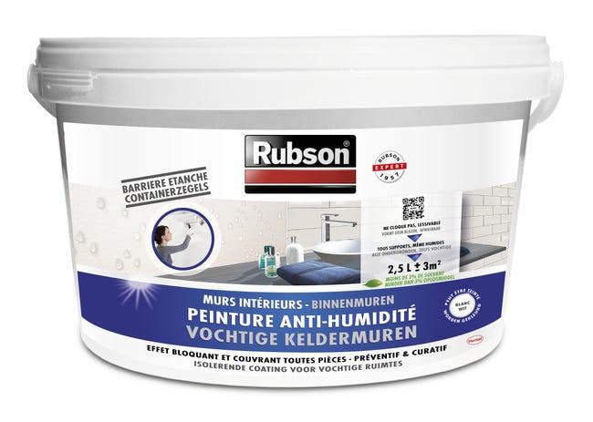 Peinture Antihumidite Stop Humidite Mur De Cave Rubson Blanc 2 5 L Leroy Merlin