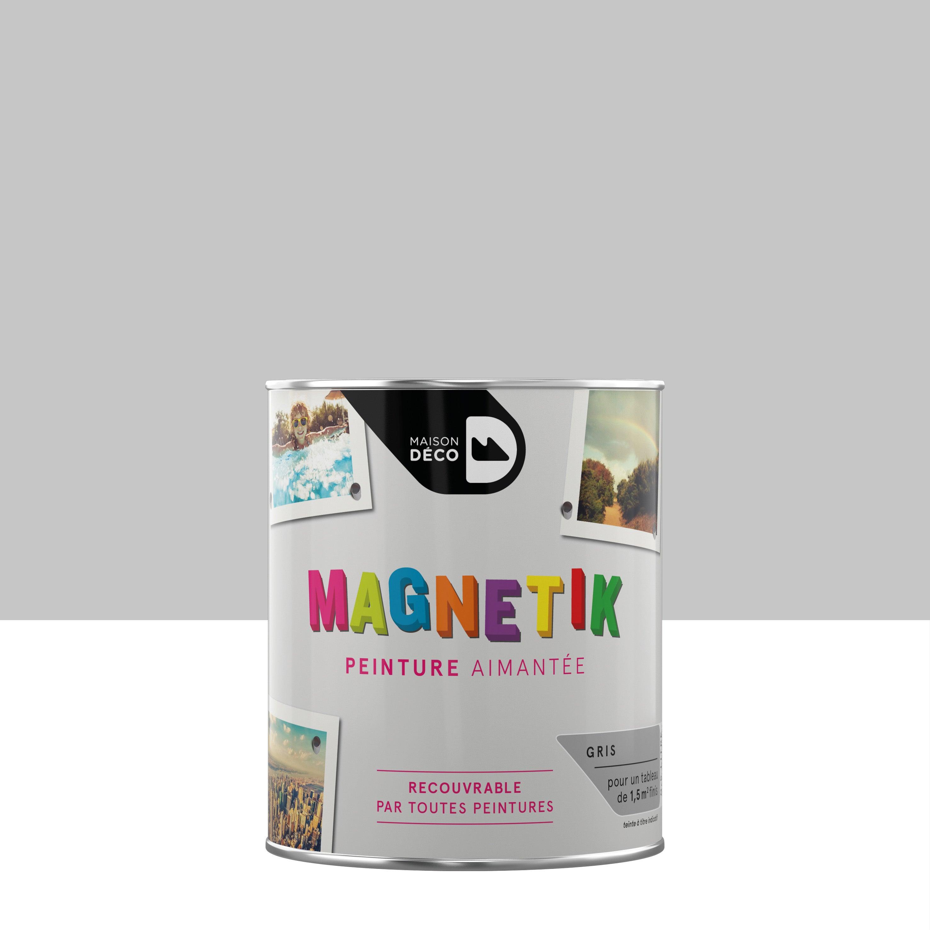 Peinture Magnetique Gris Satin Maison Deco Magnetik C Est Genial 0 5 L Leroy Merlin