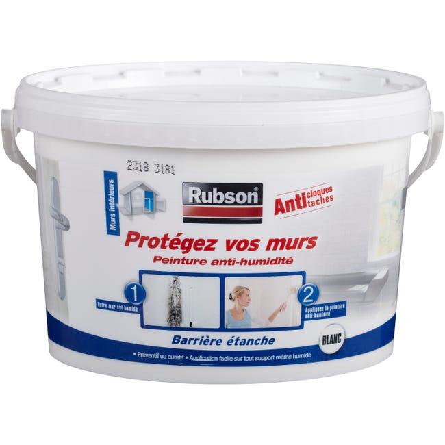 Peinture Antihumidite Protegez Vos Murs Rubson Blanc 2 5 L Leroy Merlin