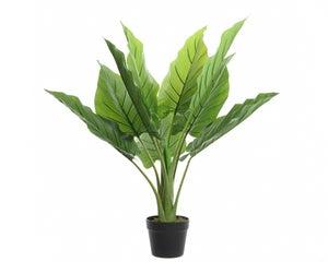 Dieffenbachia artificielle en pot diamètre 73 cm hauteur 74 cm