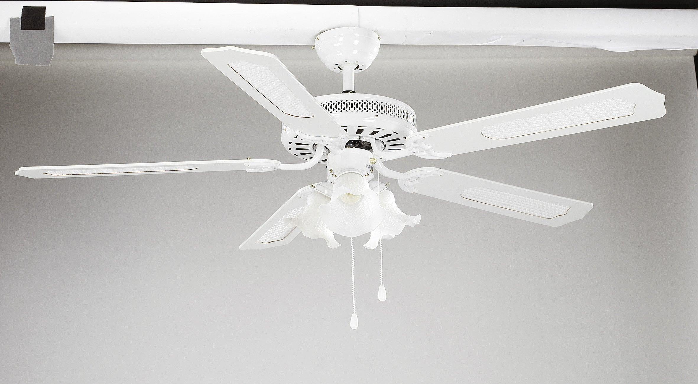 Ventilateur de plafond Bahamas INSPIRE, blanc blanc canné, 60 W