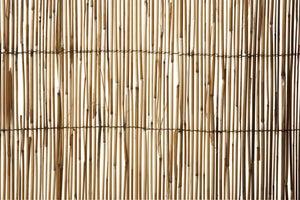 Image : Paillon roseau NORTENE Reedcane, H.150 cm x L.500 cm