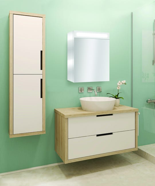 Armoire De Toilette Lumineuse L 50 Cm Chrome Giulia Leroy Merlin