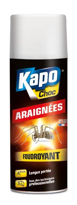 Insecticide Aerosol Araignees Kapo 400 Ml Leroy Merlin