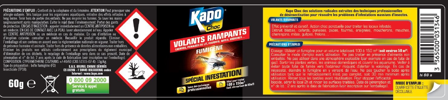Insecticide Fumigene Tous Insectes Kapo 150m3 Leroy Merlin