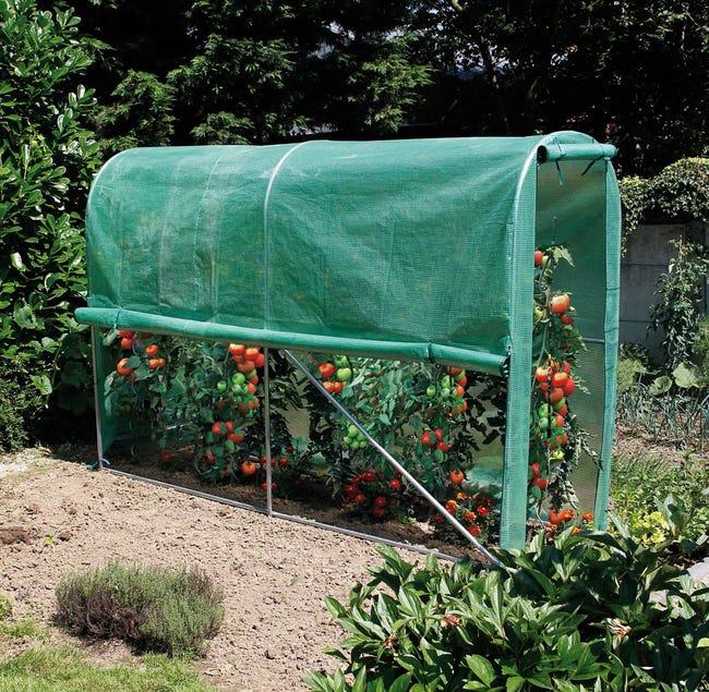 Housse Serre Nortene Tomato Greenhouse Leroy Merlin