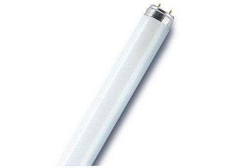 4x 150 cm DEL tube 24 W 2300 LM Néon g13//t8 Ampoules Lampe