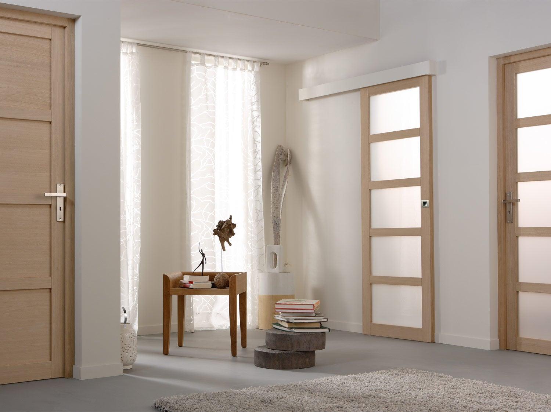 Quelle Couleur Choisir Pour Peindre Des Portes comment choisir sa porte intérieure ? | leroy merlin
